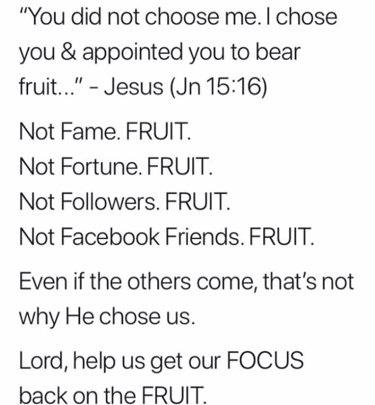"""You did not choose me. I chose you and appointed you to bear fruit."" #bouncingback #expectations #fruit #focus #bibleverse"